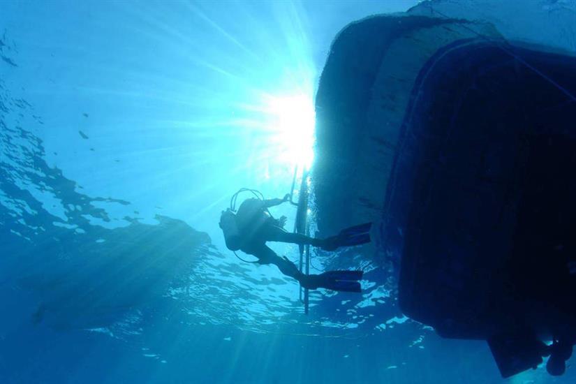 Fantastic Red Sea diving - Blue Pearl Liveaboard