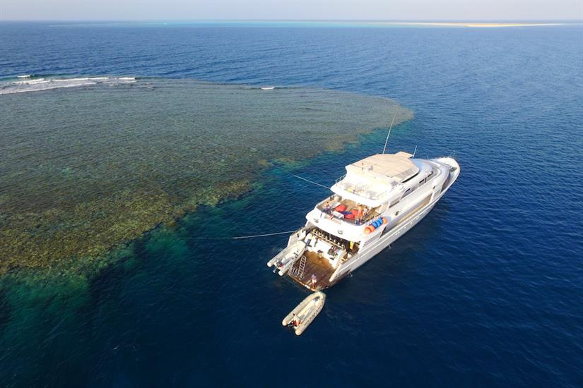 Red Sea diving - Blue Seas Liveaboard