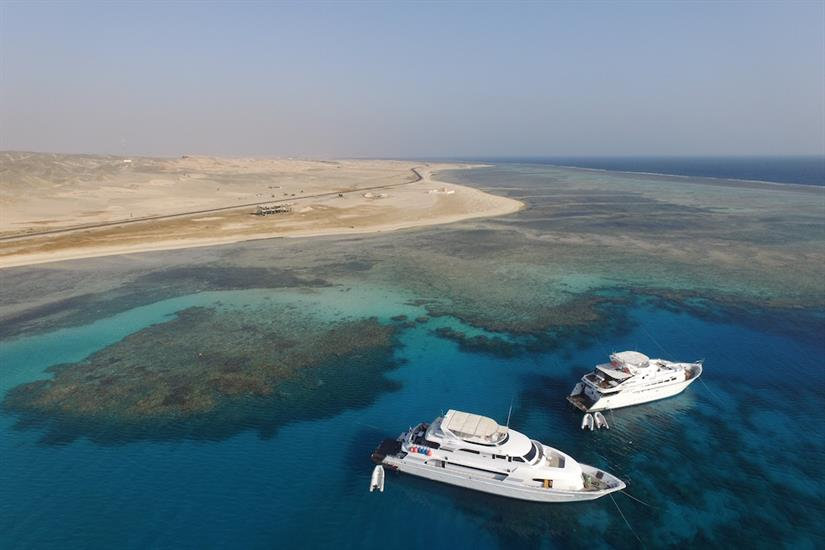 Amazing diving in the Red Sea - Blue Seas Liveaboard