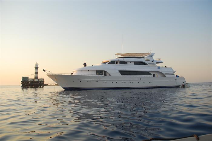 Daedalus Reef Egypt - Blue Seas Liveaboard