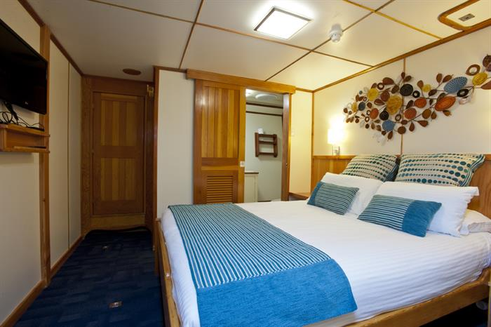 Spirit of Freedom Stateroom