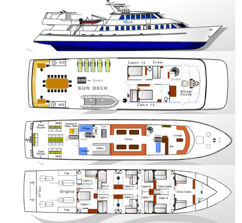 Spirit of Freedom Deck Plan floorplan