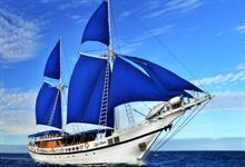 Fiji Siren