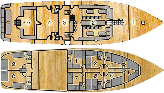 Deck Plan - Aurora Liveaboard floorplan