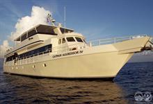 Cayman Aggressor IV
