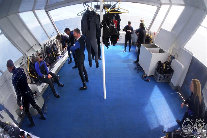 Galapagos Aggressor III Liveaboard Spacious Dive Deck