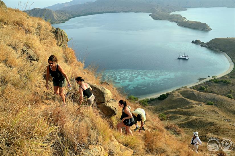 Komodo Island Trips with the Indo Aggressor Liveaboard