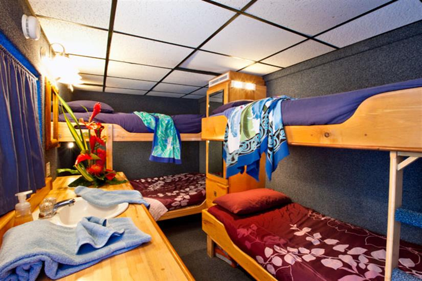 Kona Aggressor II Liveaboard Quad Stateroom