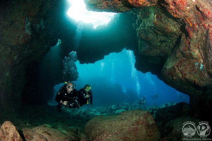 Spectacular Diving with Kona Aggressor II Liveaboard