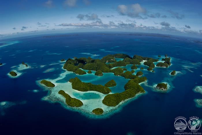 Discover Palau with Palau Aggressor II Liveaboard