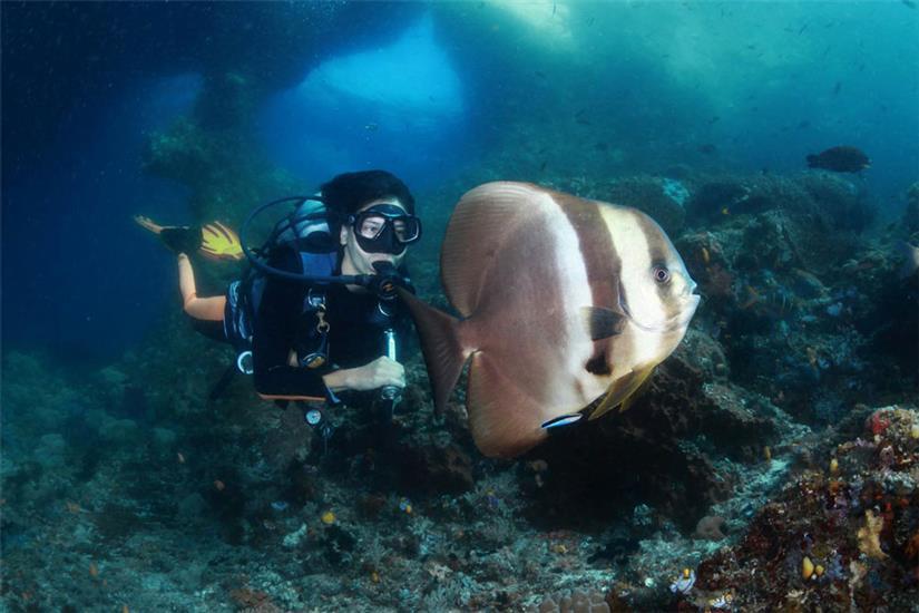 Amazing Diving in Raja Ampat