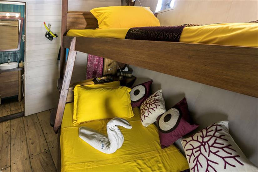Lower Deck Cabin 5 - Ambai Liveaboard
