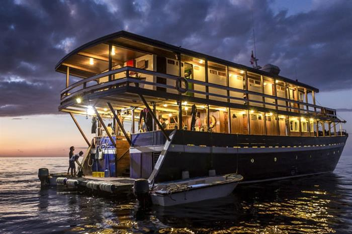 Night diving in Indonesia with Ambai Liveaboard