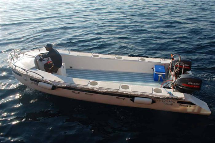 Custom built dive tenders