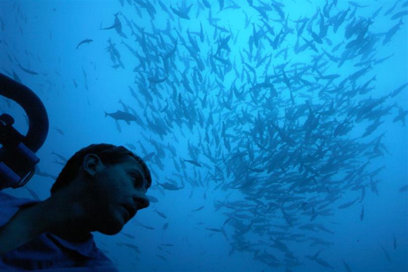 Argo Liveaboard DeepSee Submersible