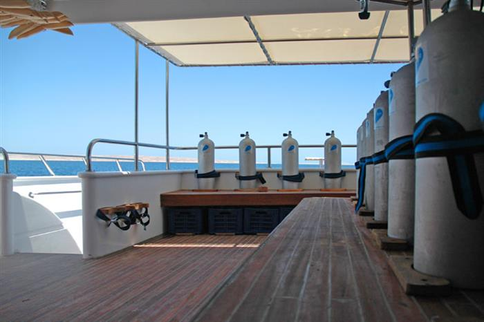 Blue Fin Liveaboard - Dive deck area