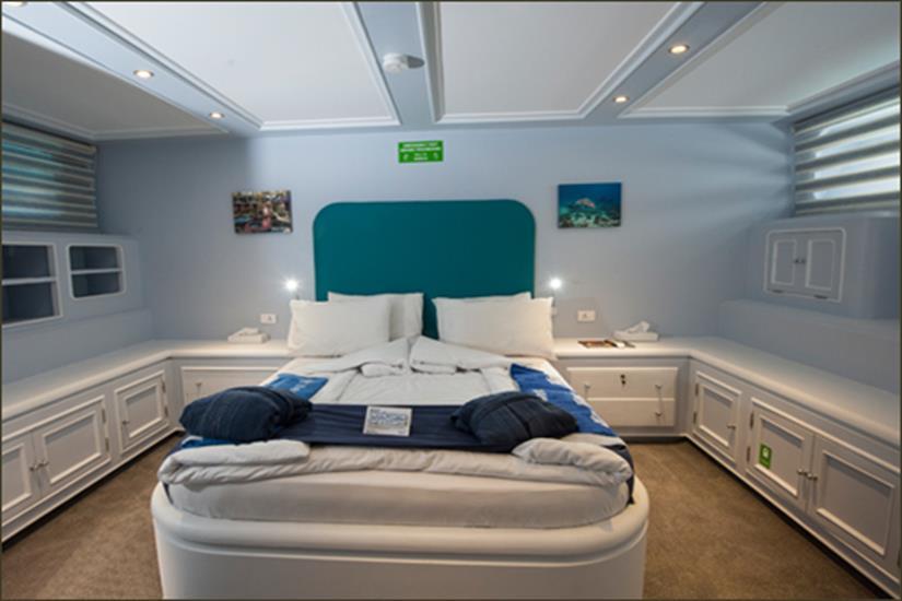 King Suite (Lower Deck) - Blue Fin Liveaboard