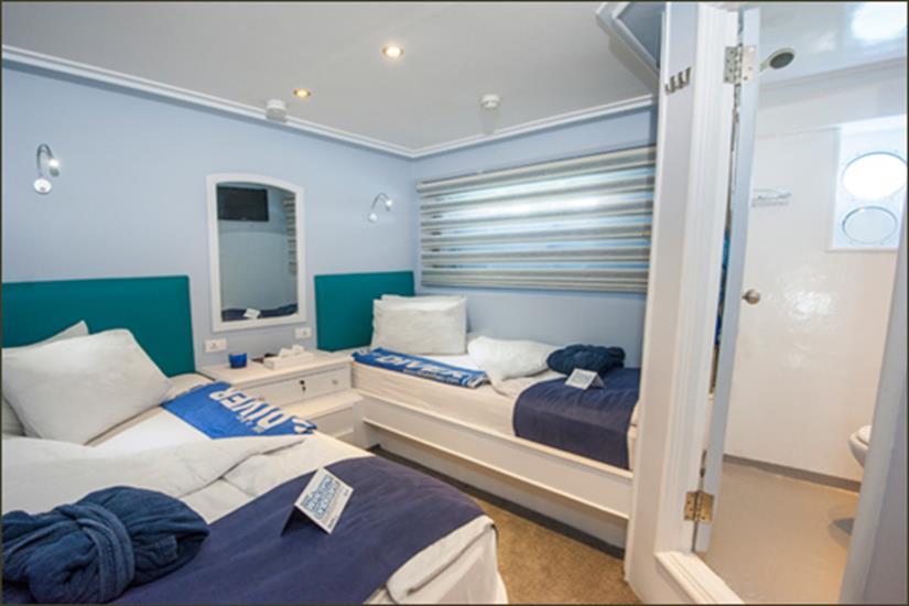 Twin Cabin (Lower Deck) - Blue Fin Liveaboard