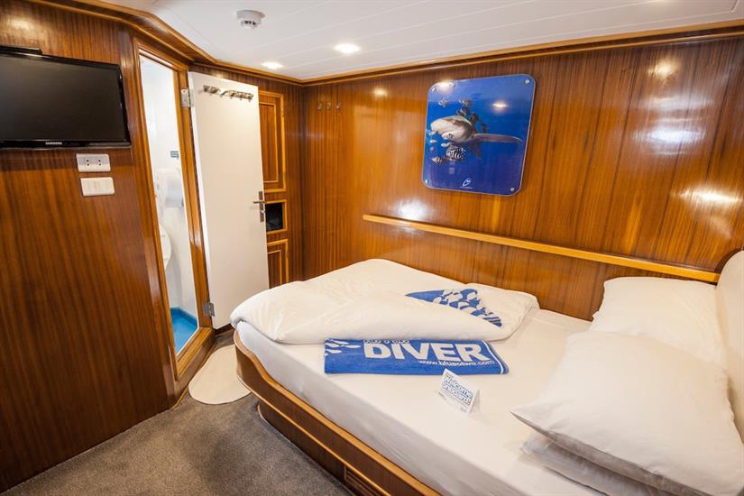 Double Cabin - blue Melody Red Sea