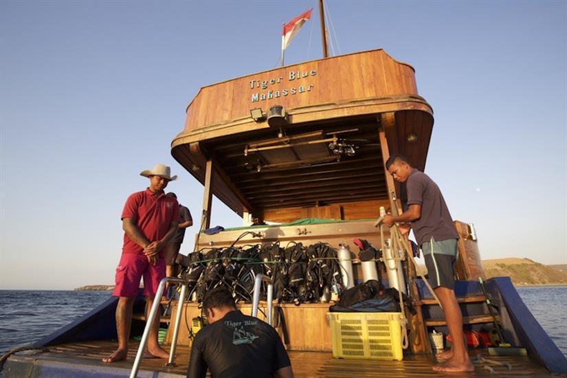 Dive Deck - Tiger Blue Indonesia
