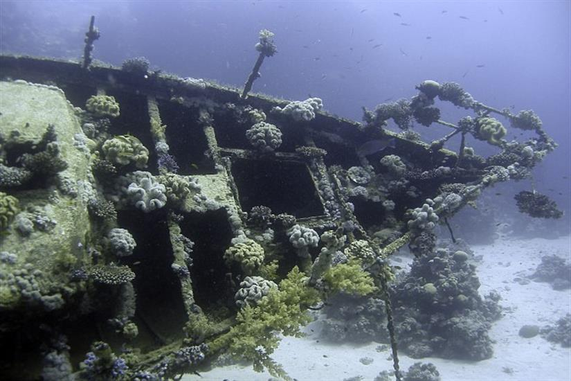 Abu Galawa Soraya Wreck Red Sea