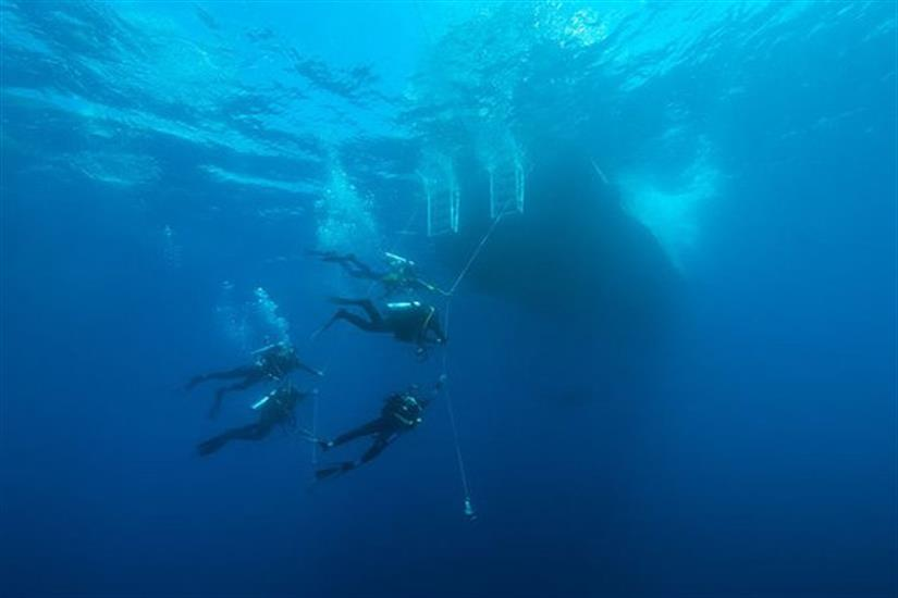 Amazing underwater visibility in the Caribbean onboard Caribbean Explorer II