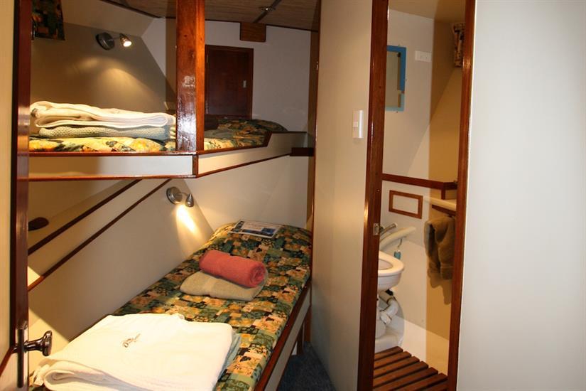 Cabin 1  - Ocean Hunter 1