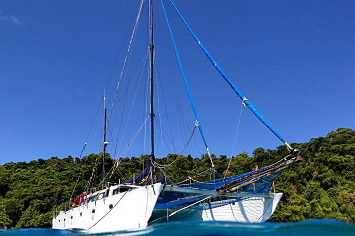 Inula Catamaran