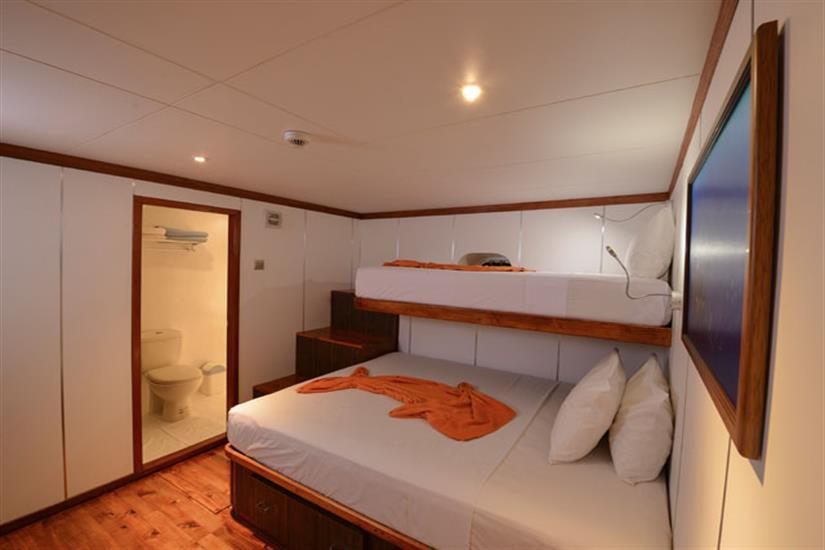 Standard Cabin  - Carpe Diem Liveaboard