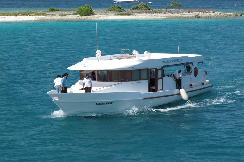 MV Carpe Diem - Diving Dhoni