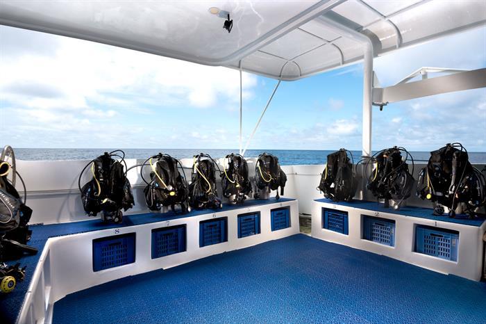Dive Deck - Galapagos Master