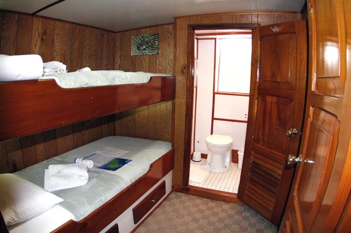 Sea Hunter Liveaboard Cabin