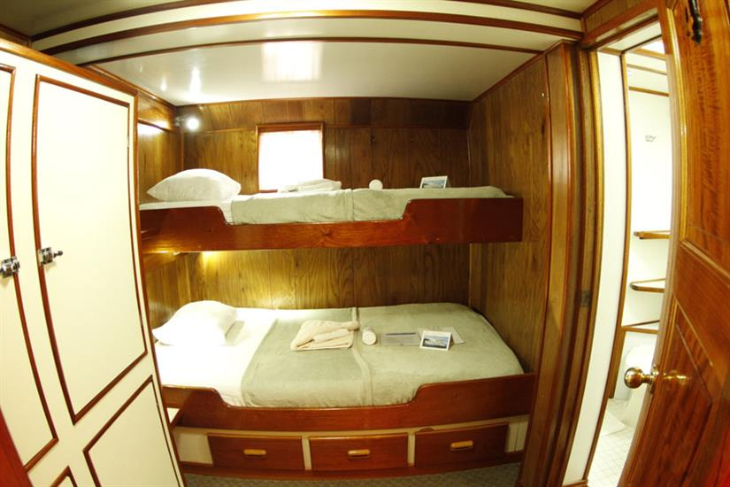 Undersea Hunter Liveaboard Cabin