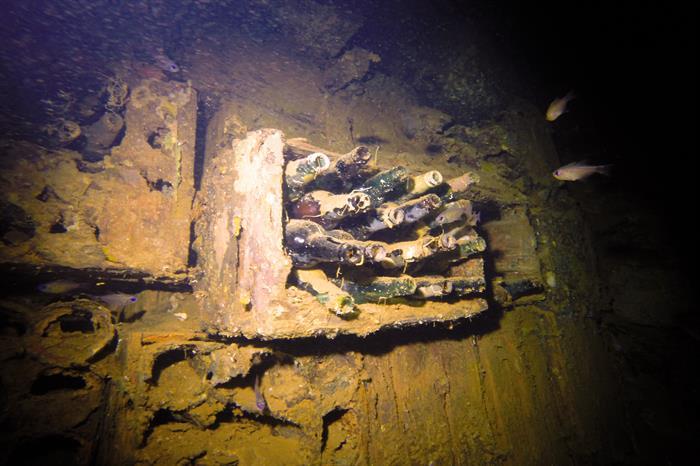 Wreck of Rio de Janeiro Maru, Micronesia