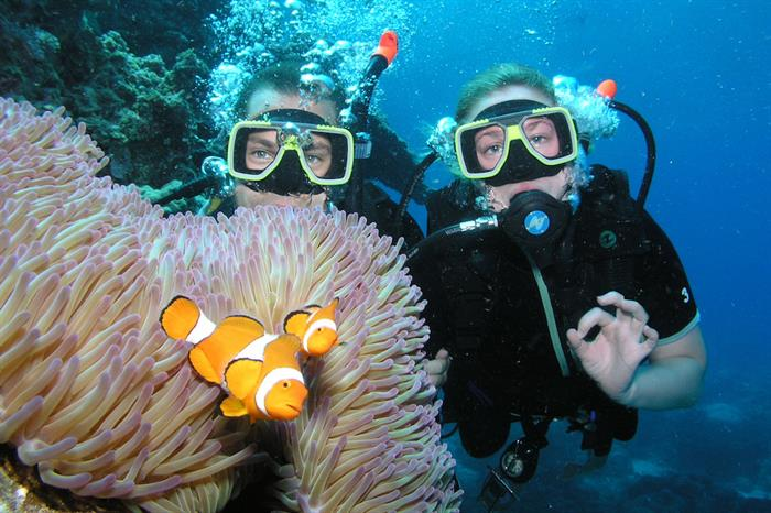Clown fish & anemone on the Great Barrier Reef - ScubaPro I