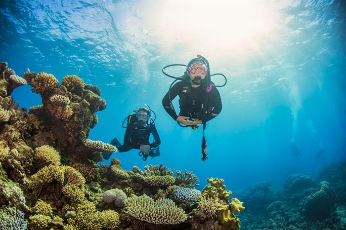 Enjoy great visibility and corals - ScubaPro II