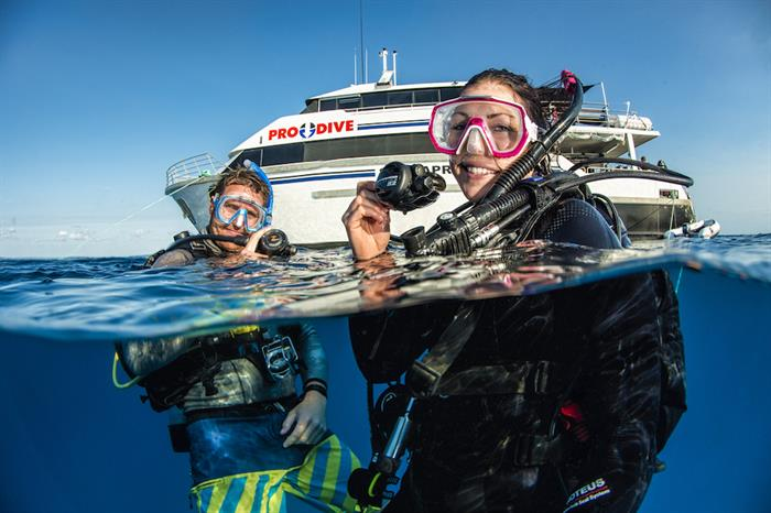 Amazing  dives on the Great Barrier Reef, Australia