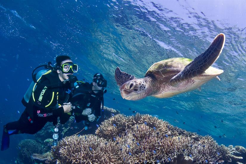 Turtle encounter on the Great Barrier Reef - ScubaPro III