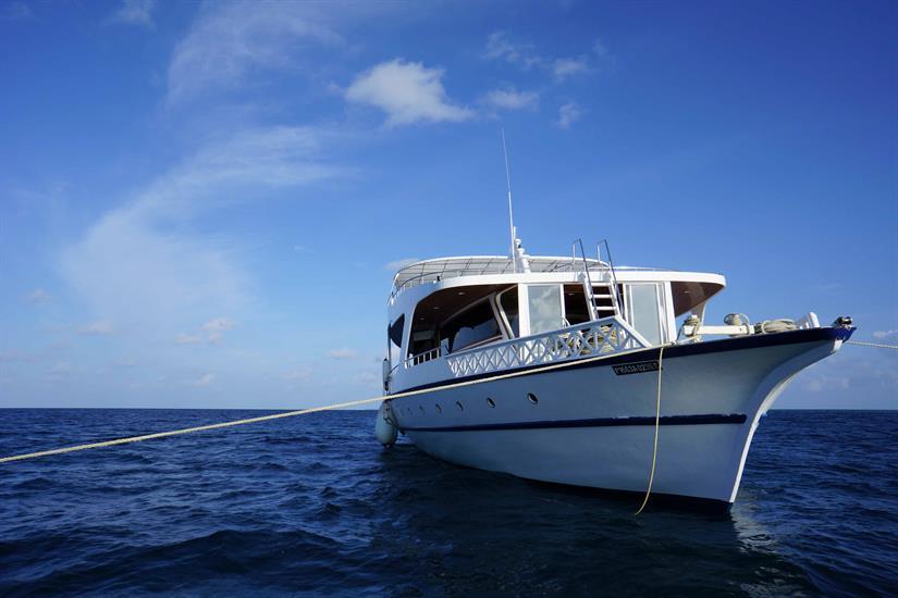Dhinasha Safari Boat