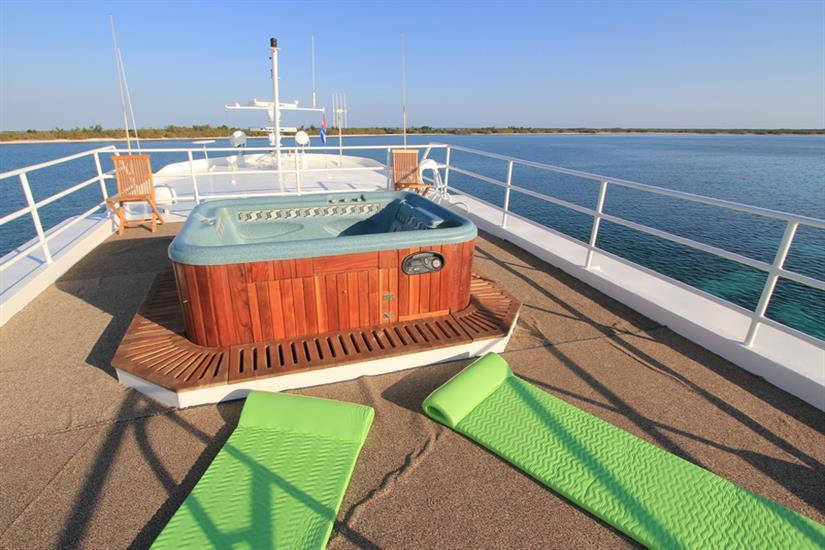 Hot Tub on the top deck -  Avalon I Cuba