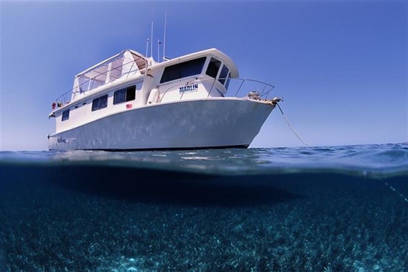 La Reina liveaboard diving Jardines de la Reina, Cuba