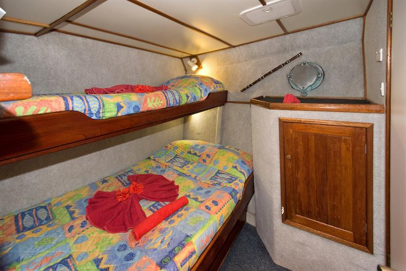 Double/Twin cabin - Febrina