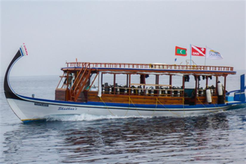 Diving Dhoni - Blue Shark 2 Liveaboard Maldives