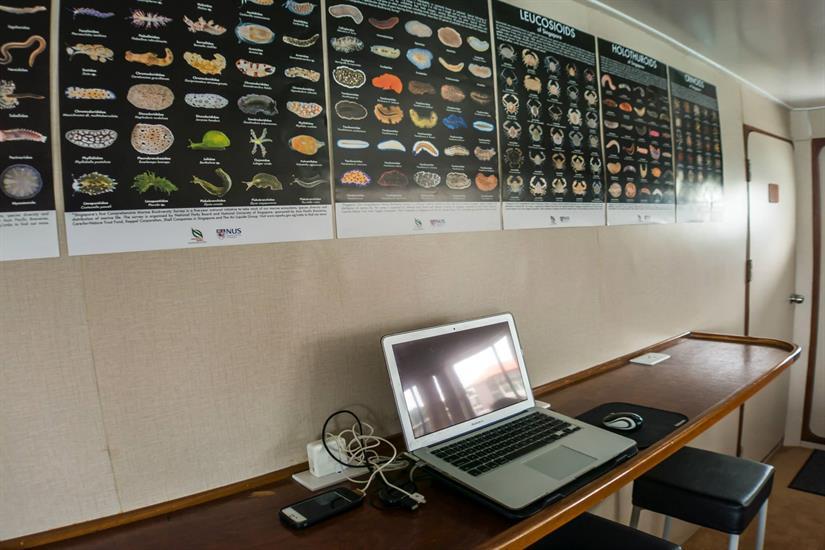 MV DiveRACE Class E - Computer Table