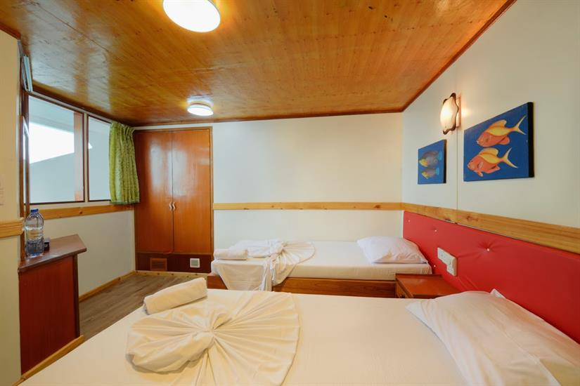 Superior Cabin - Maldives Blue Force Two