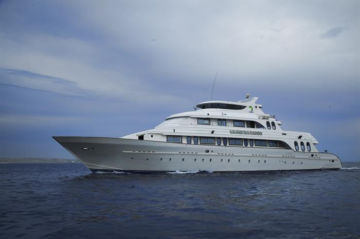 MY Grand Sea Serpent Liveaboard Red Sea
