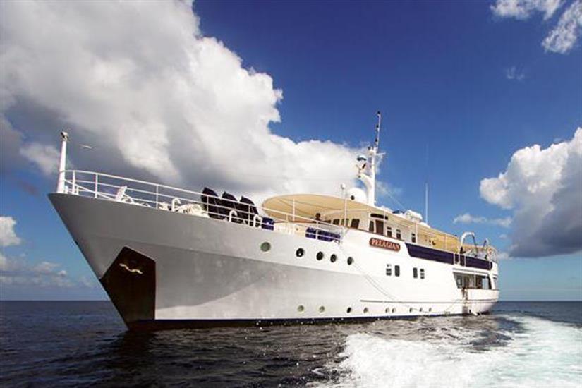 Pelagian dive yacht in Wakatobi