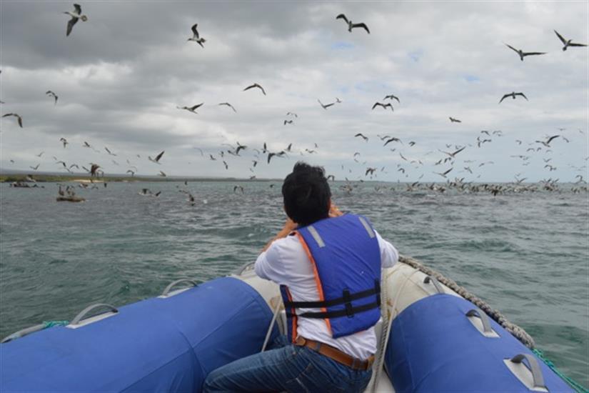 Explore the Galapagos