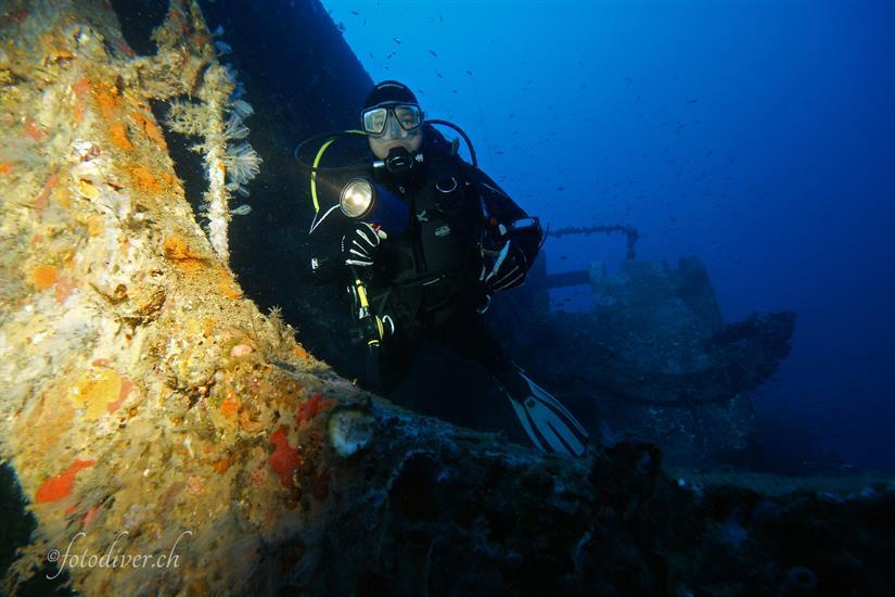 Tuscan Archipelago Diving - Norseman Liveaboard