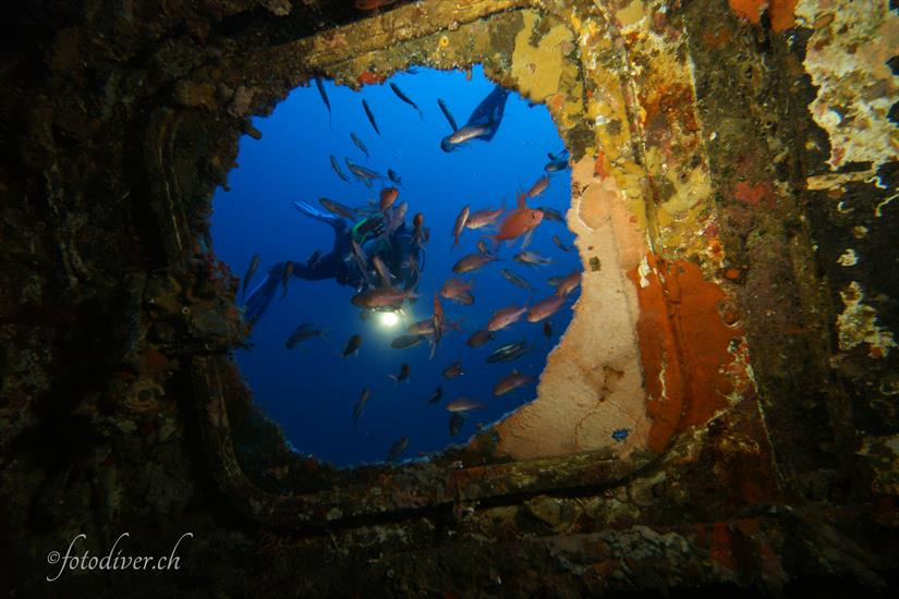 Diving the Tuscan Archipelago